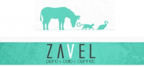 Sábado 13 junio – Concierto didáctico: El gato, el cisne y el burro