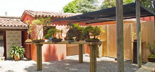 Colección de Bonsai de Rolf Beyebach en la Fundación Museo Evaristo Valle, Somió-Gijón.