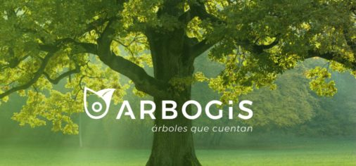 5 junio // Día Mundial del Medioambiente: Implantación de ArboGis, digitalización y gestión del arboladode los jardines históricos del Museo Evaristo Valle